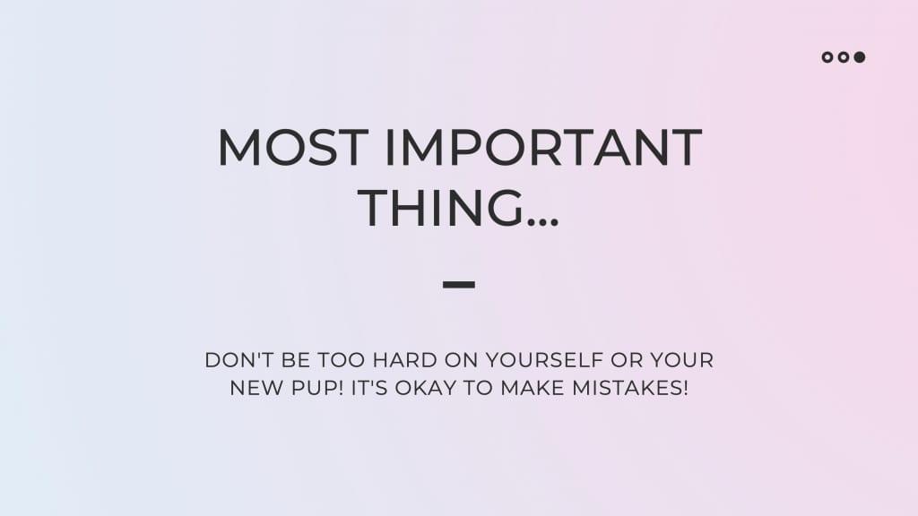 puppy guide slide 12