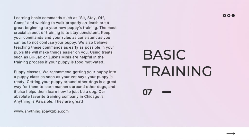 puppy guide slide 7